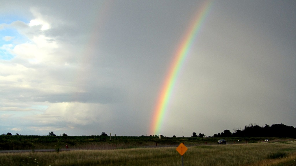 Nice looking rainbow after a break in rain on the way home.