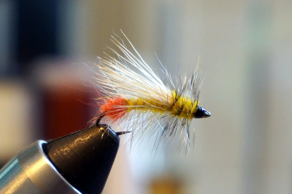 Stimulator: One of my favorite and most productive dry flies for the Credit River