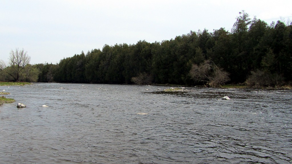 The Grand River was quiet in more ways than one last week