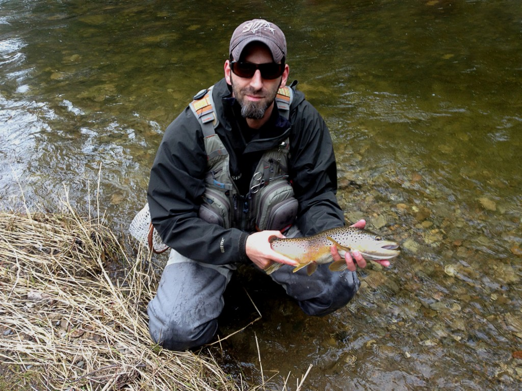 An excellent Brown Trout to finish off the opening day of trout season