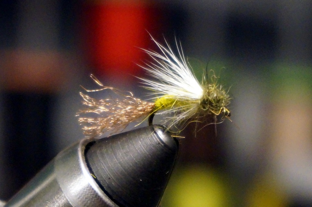 A variation of the above fly, tied with slightly different materials and colors
