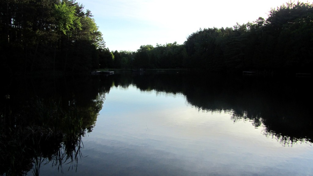 A quiet and peaceful morning on a trout pond.